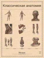 Скачать приложение анатомия